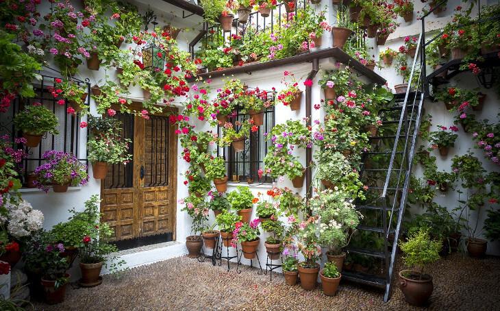 Grüne Dachterrasse kübelpflanzen ein muss für jede terrasse